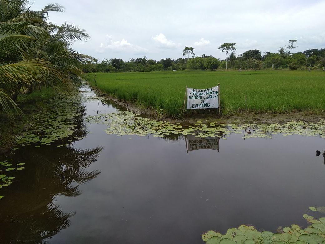 Pelatihan Penerapan Teknologi Budidaya Air Payau di Desa Grugu Kec. Kawunganten (3)