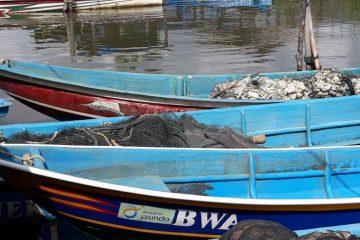 Bantuan Bina Lingkungan dari Jasindo dan BWA (14)