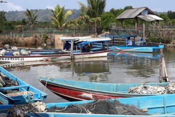 Bantuan Bina Lingkungan dari Jasindo dan BWA (15)