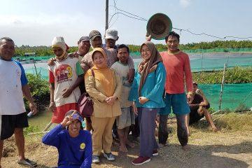 Monitoring dan Pembinaan pada Kelompok Budidaya Udang Windu Langgeng (2)