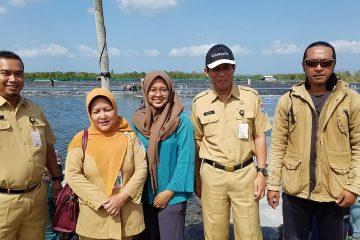 Monitoring dan Pembinaan pada Kelompok Budidaya Udang Windu Langgeng (6)