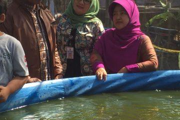 Pelatihan Budidaya Ikan Air Tawar Desa Inovasi dan Desa Binaan PKK (1)