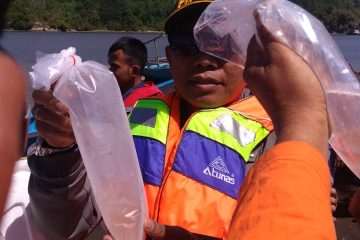 Penebaran Baby Lobster di Perbatasan Cilacap dan Pengandaran (6)