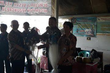 Peningkatan Kapasitas Nelayan Kdreja (29)