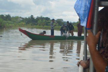 Perbaikan Stock SDI Jenis Ikan Sidat (37)