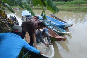 Perbaikan Stock SDI Jenis Ikan Sidat (9)