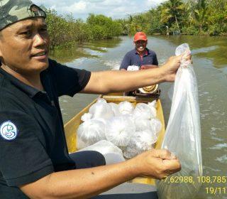 Restocking Ikan Nila Sidamukti (6)