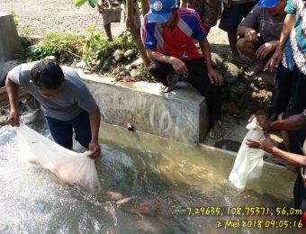 Sumbangsih Kelompok Rukun Jaya desa Jenang Kec. Majenang untuk kegiatan masyarakat desa (4)