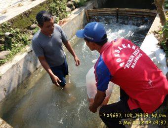 Sumbangsih Kelompok Rukun Jaya desa Jenang Kec. Majenang untuk kegiatan masyarakat desa (8)