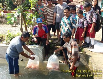 Sumbangsih Kelompok Rukun Jaya desa Jenang Kec. Majenang untuk kegiatan masyarakat desa (9)